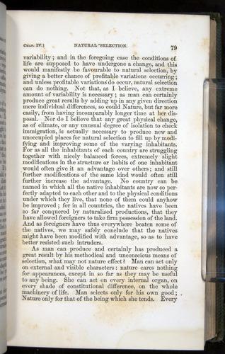 Image of Darwin-F377-1860-00079