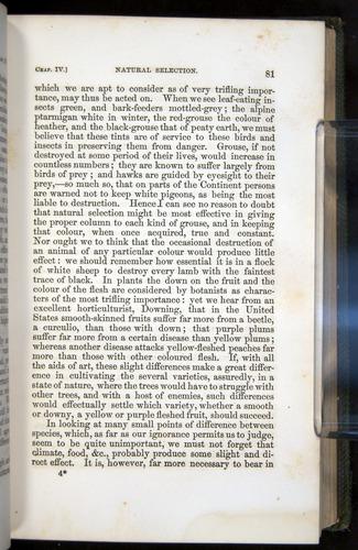 Image of Darwin-F377-1860-00081