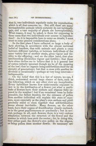 Image of Darwin-F377-1860-00091