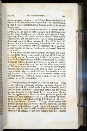Image of Darwin-F377-1860-00095