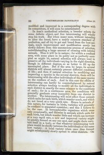 Image of Darwin-F377-1860-00096