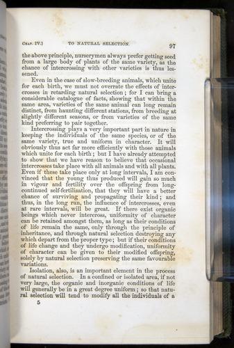 Image of Darwin-F377-1860-00097