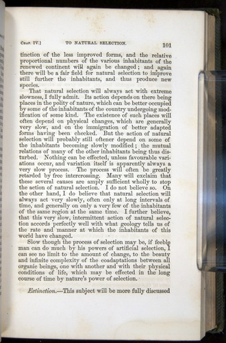 Image of Darwin-F377-1860-00101