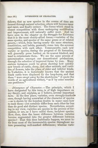 Image of Darwin-F377-1860-00103
