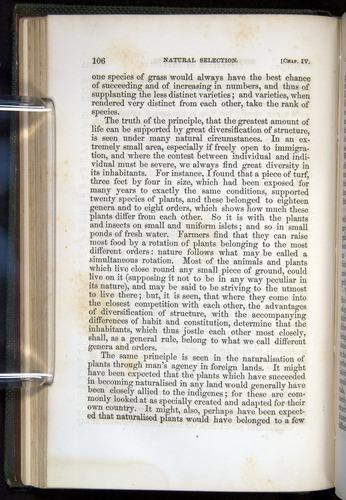 Image of Darwin-F377-1860-00106