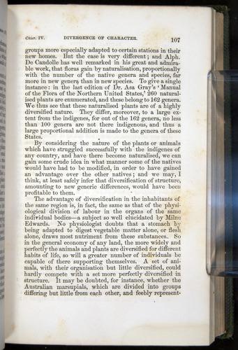 Image of Darwin-F377-1860-00107