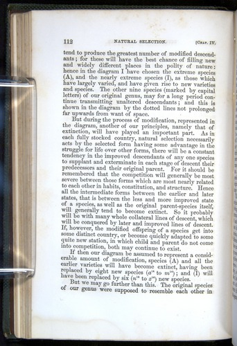 Image of Darwin-F377-1860-00112