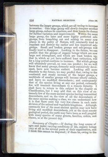 Image of Darwin-F377-1860-00116