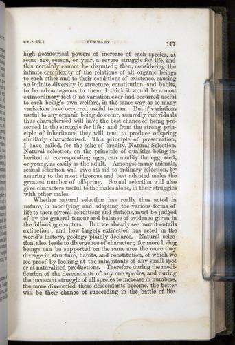 Image of Darwin-F377-1860-00117