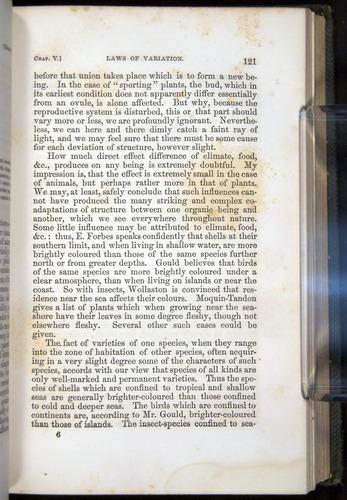 Image of Darwin-F377-1860-00121