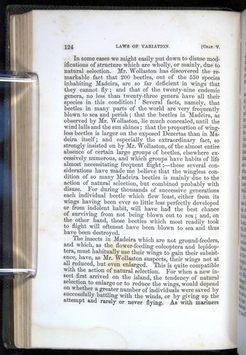 Image of Darwin-F377-1860-00124