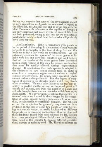 Image of Darwin-F377-1860-00127