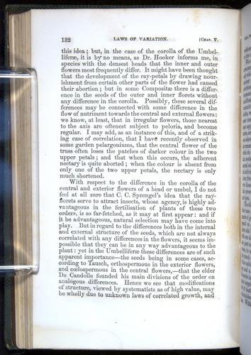 Image of Darwin-F377-1860-00132