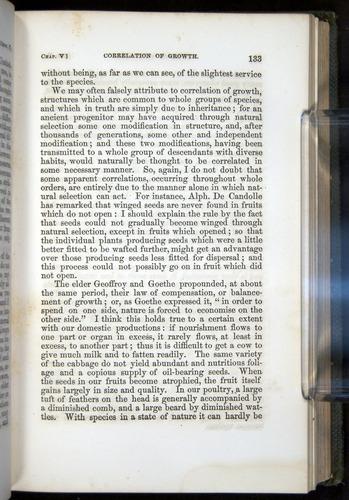 Image of Darwin-F377-1860-00133