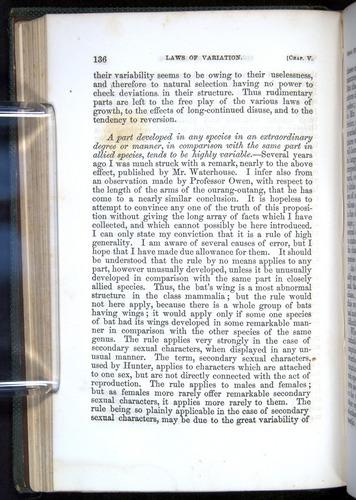 Image of Darwin-F377-1860-00136