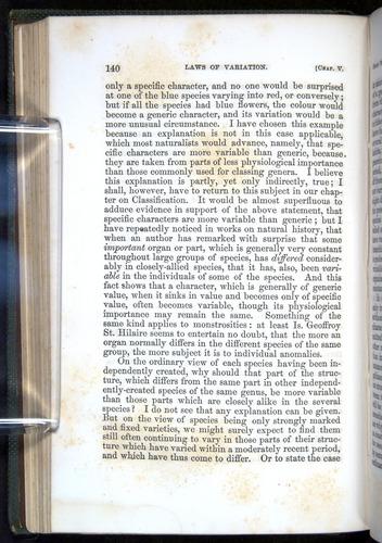 Image of Darwin-F377-1860-00140
