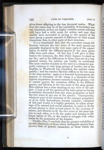 Image of Darwin-F377-1860-00142