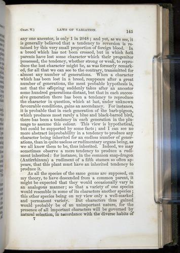 Image of Darwin-F377-1860-00145