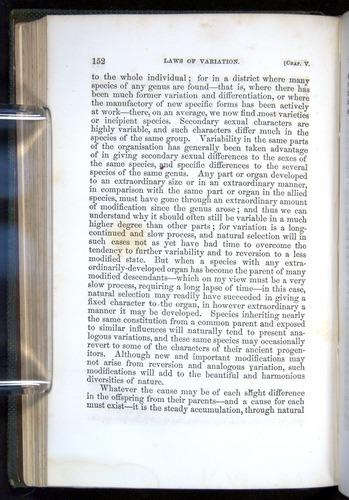 Image of Darwin-F377-1860-00152