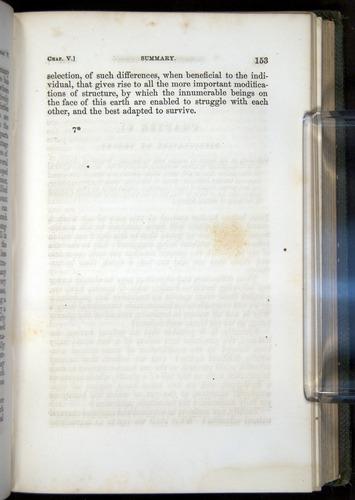 Image of Darwin-F377-1860-00153