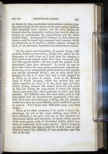 Image of Darwin-F377-1860-00161