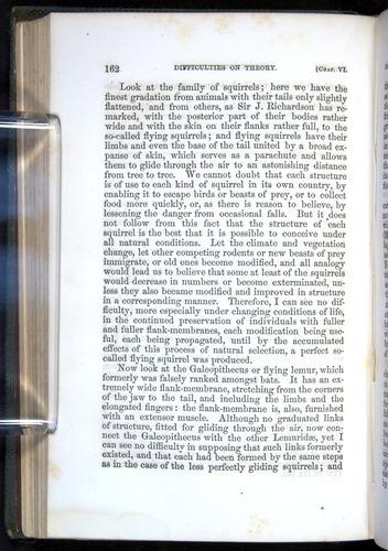Image of Darwin-F377-1860-00162