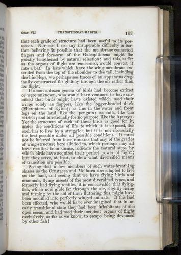 Image of Darwin-F377-1860-00163