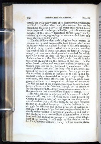 Image of Darwin-F377-1860-00166