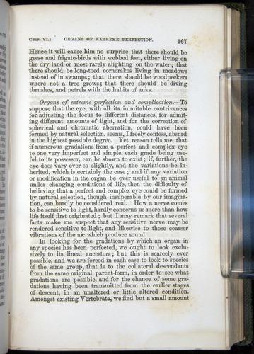 Image of Darwin-F377-1860-00167