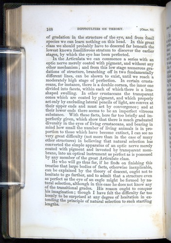 Image of Darwin-F377-1860-00168