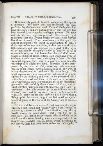 Image of Darwin-F377-1860-00169