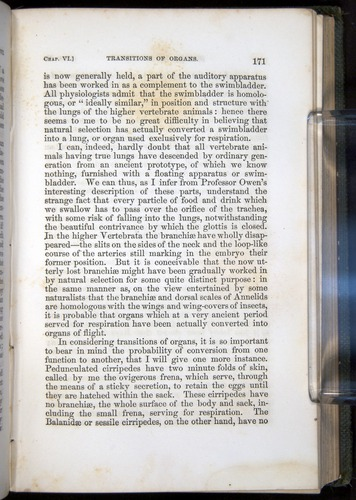 Image of Darwin-F377-1860-00171