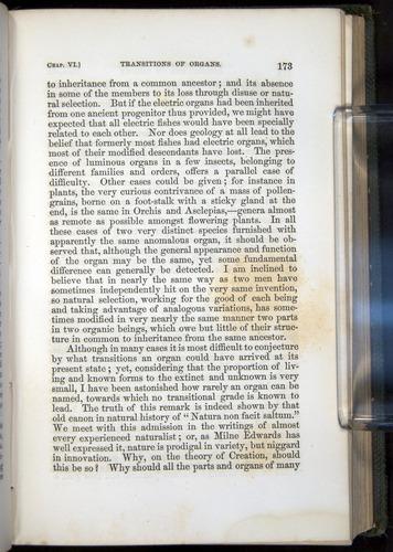 Image of Darwin-F377-1860-00173