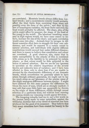 Image of Darwin-F377-1860-00177