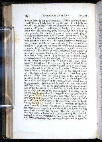 Image of Darwin-F377-1860-00178