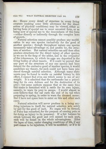 Image of Darwin-F377-1860-00179