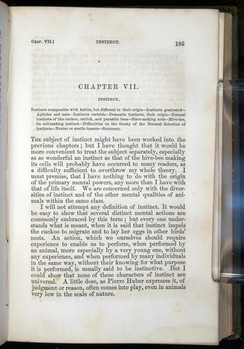 Image of Darwin-F377-1860-00185