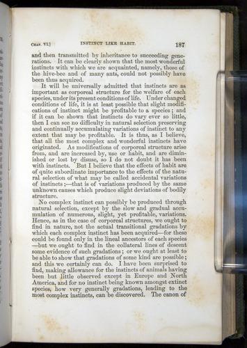 Image of Darwin-F377-1860-00187