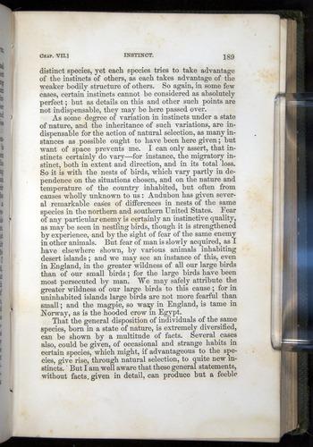 Image of Darwin-F377-1860-00189