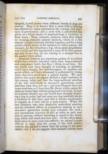 Image of Darwin-F377-1860-00191
