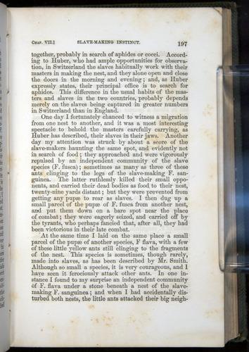 Image of Darwin-F377-1860-00197