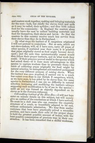Image of Darwin-F377-1860-00199
