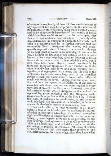 Image of Darwin-F377-1860-00208
