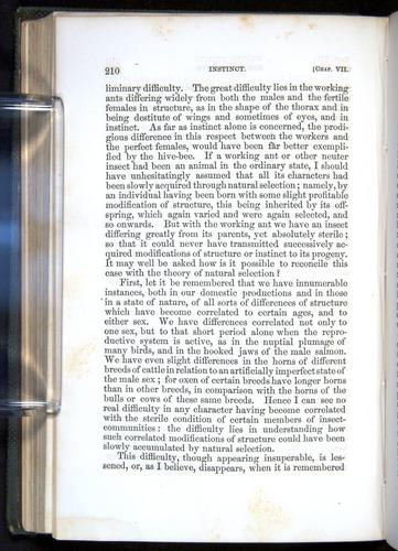 Image of Darwin-F377-1860-00210