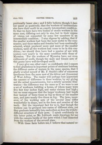 Image of Darwin-F377-1860-00213