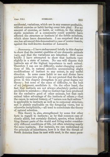 Image of Darwin-F377-1860-00215