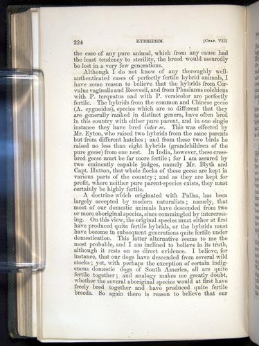 Image of Darwin-F377-1860-00224
