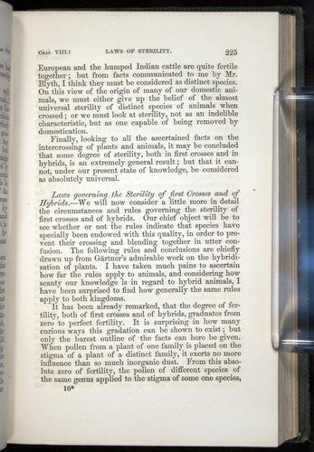Image of Darwin-F377-1860-00225