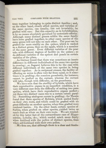 Image of Darwin-F377-1860-00231