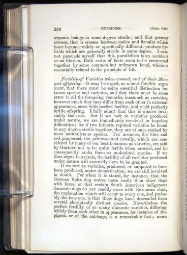 Image of Darwin-F377-1860-00236